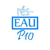 Logo-reseaup10