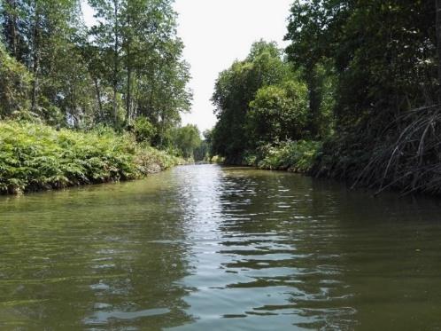 M2/ 2017 – Entre discours globaux et perceptions locales : quelles perspectives pour la protection de la mangrove ?